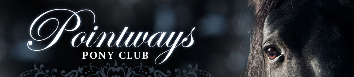 New pony-club-header 141029
